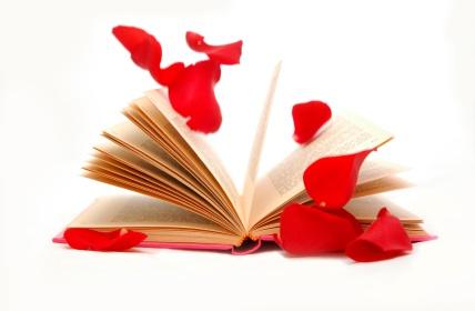 Do You Hide Your Romance Book When