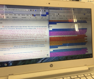 Narrative essay reviewion stations